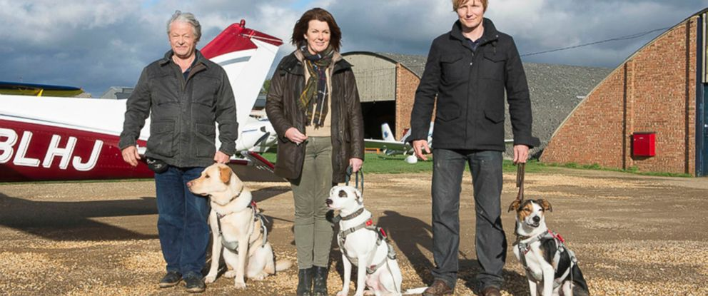 PHOTO: In the Dogs Might Fly UK television show, mans best friend is put to the ultimate test: flying a plane.