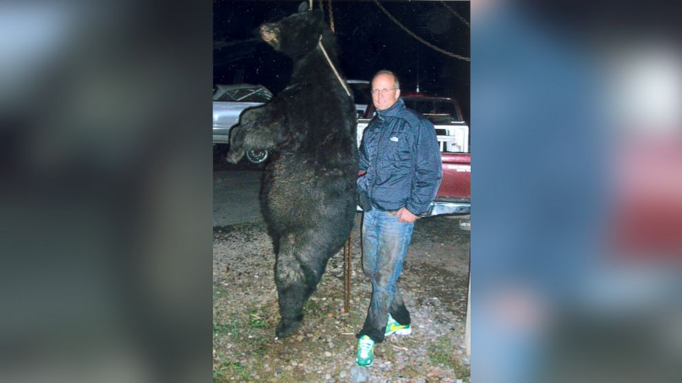 According to the Wisconsin Department of Natural Resources, Palmer shot the bear with a bow and the aid of bear dogs.