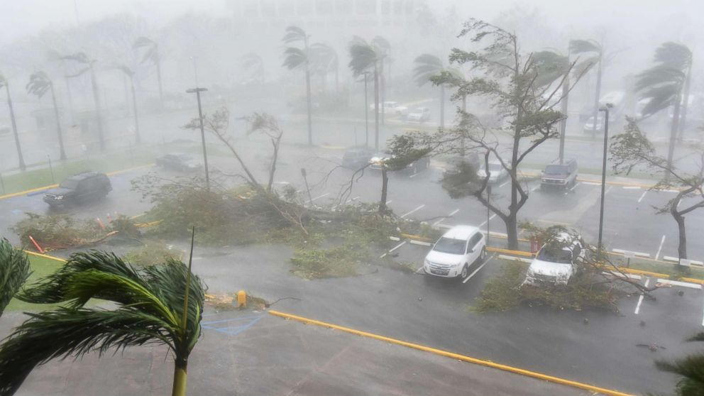Trees are toppled in a parking lot at Roberto Clemente Coliseum in San Juan, Puerto Rico, Sept. 20, 2017, during the passage of the Hurricane Maria.