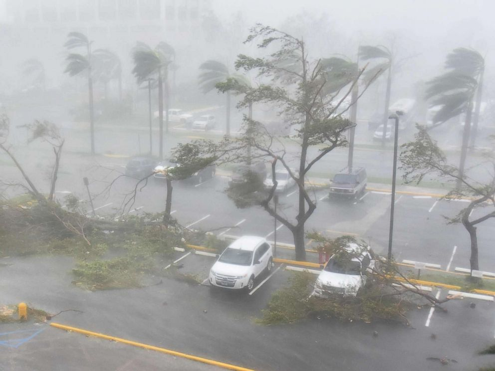 PHOTO: Trees are toppled in a parking lot at Roberto Clemente Coliseum in San Juan, Puerto Rico, Sept. 20, 2017, during the passage of the Hurricane Maria.