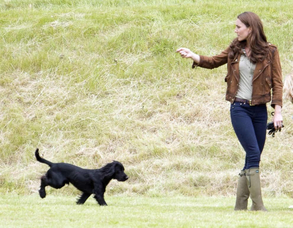 Catherine Duchess Of Cambridge is seen with her dog Lupo at the Tusk Charity Polo Match at Beaufort Polo Club near