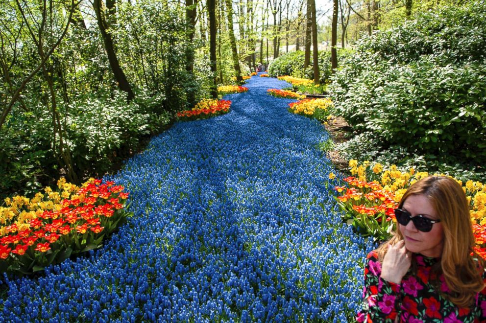 PHOTO: Keukenhof, one of the worlds largest flower gardens in Lisse, The Netherlands, is also known as the Garden of Europe, April 21, 2018.