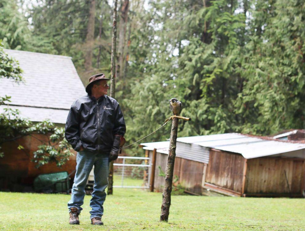 PHOTO: Falconer Kim Kamstra stands next to his resting raptor, Avro, in his backyard in Maple Ridge, British Columbia on Jan. 23, 2018.