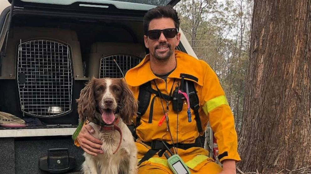 PHOTO: Ryan Tate and his pup Taylor search for koalas injured in the bush fires in Australia.