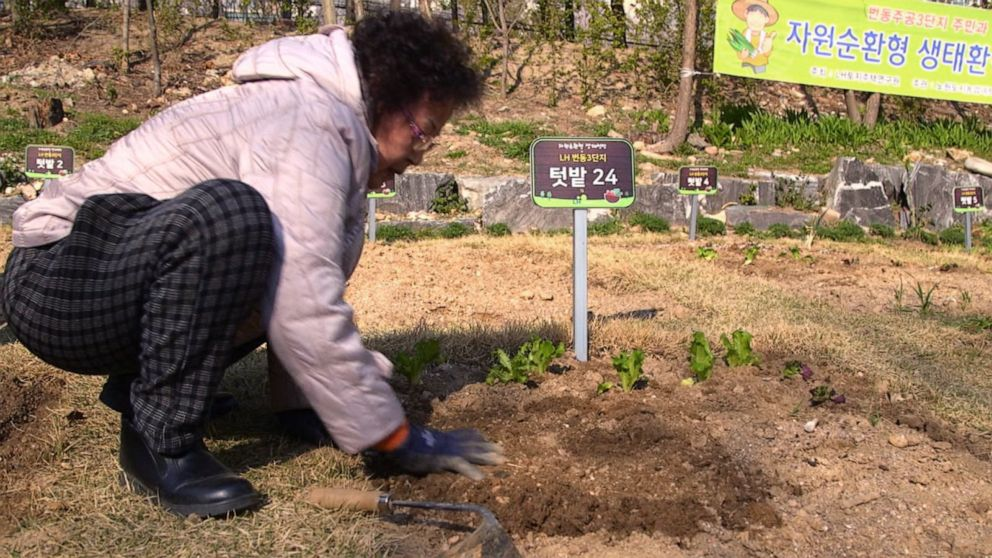 South Korea's food waste reduction plans feature urban farming and modern garbage bins