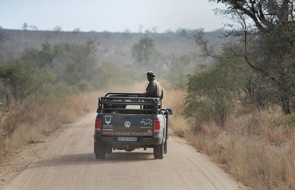 PHOTO: In this file photo park rangers patrol a section of Kruger National Park scouting for possible poachers on July 31, 2014.