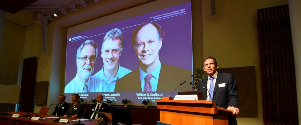 PHOTO: Thomas Perlmann (right), the secretary of the Nobel Committee, speaks as the winners are announced of the 2019 Nobel Prize in Physiology or Medicine during a press conference at the Karolinska Institute in Stockholm, Sweden, Oct. 7, 2019.