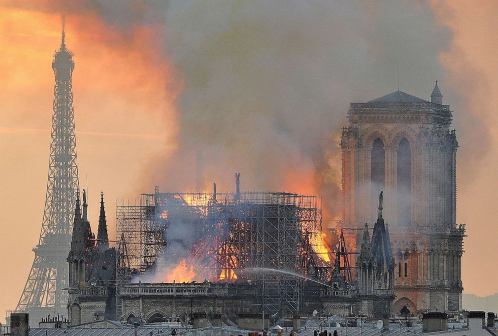Bee-wildering! Hives of Notre-Dame in miraculous survival