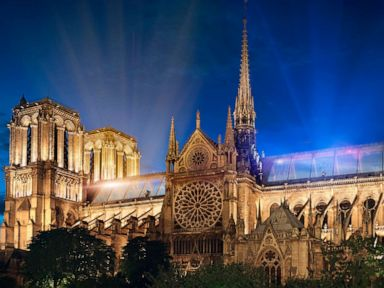 Notre Dame proposals envision green roof glass spire beam of light