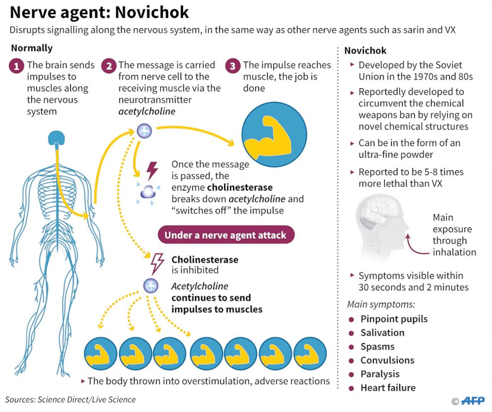 PHOTO: An illustration shows nerve agent: Novichok and how it works.