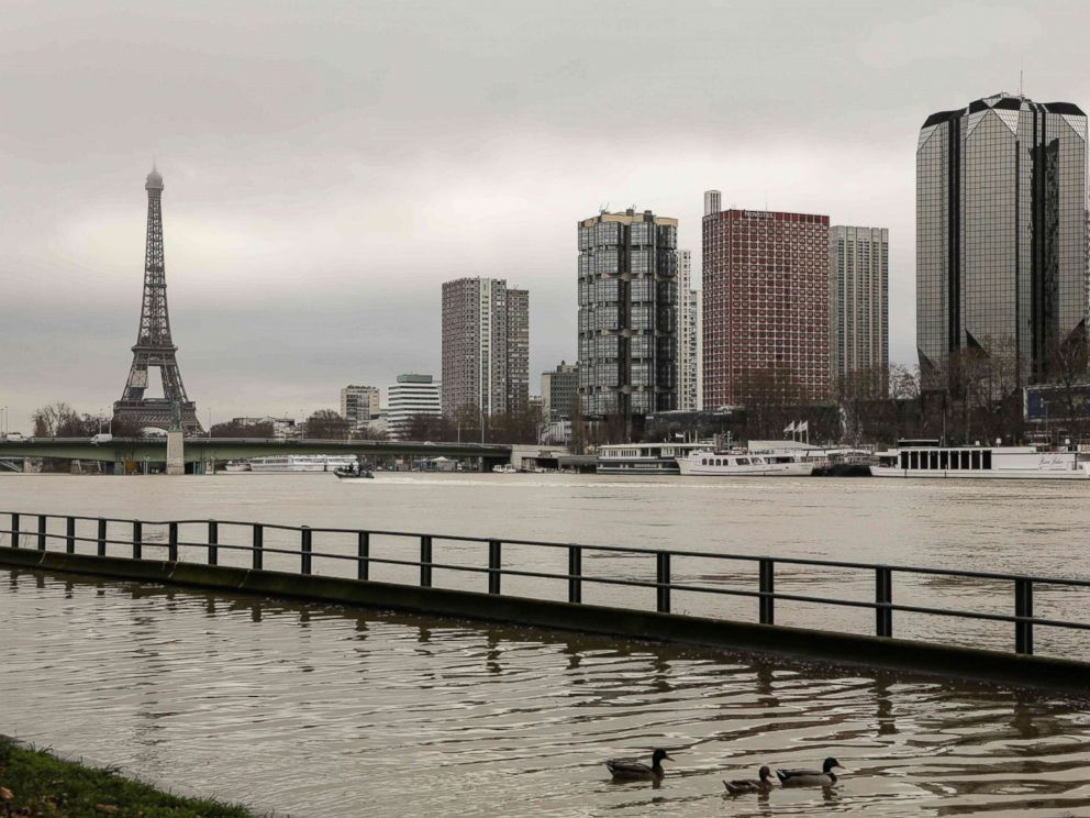 PHOTO: Ducks swim on the flooded banks of the river Seine in Paris, Jan. 23, 2018.