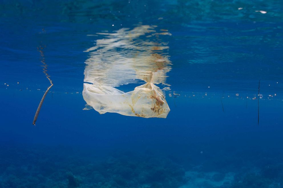 PHOTO: A plastic bag is shown floating in the ocean off the coast of the Philippines, November 2011.