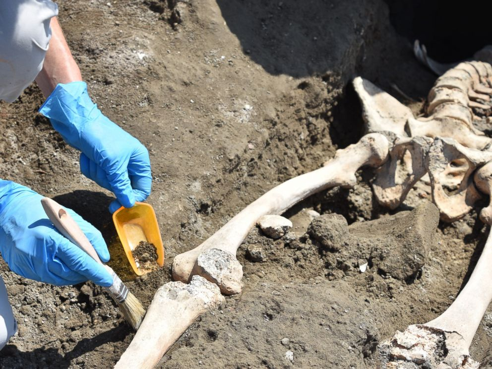 PHOTO: Archaeologists discovered the skeleton of a man at the Roman city of Pompeii who they think fell while fleeing the volcanic explosion of Mt. Vesuvius in 79 A.D.