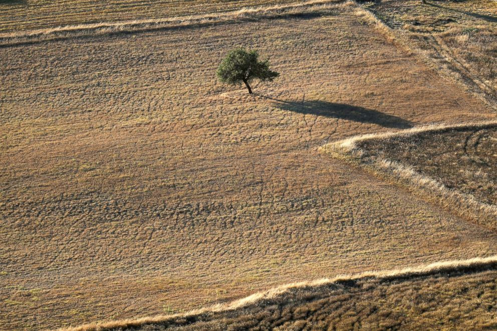PHOTO: An aerial view of a cereal intensive farm near Monsaraz, Portugal, Aug. 8, 2018.