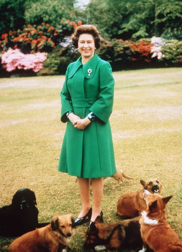 PHOTO: Queen Elizabeth II relaxes at Sandringham with her corgis.