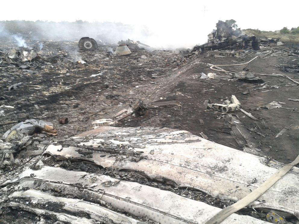 PHOTO: A general view shows the site of a Malaysia Airlines Boeing 777 plane crash in the settlement of Grabovo in the Donetsk region, July 17, 2014.