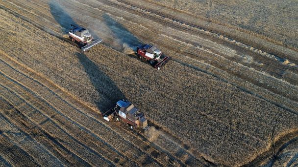 Threats to food supply and environment loom without significant changes: Report