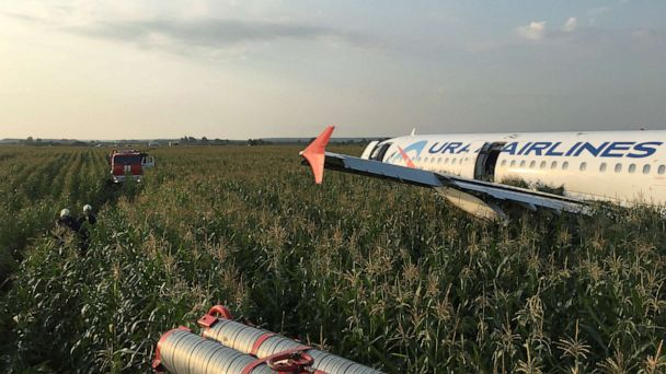 23 injured when Russian jet make emergency landing in corn field after striking birds