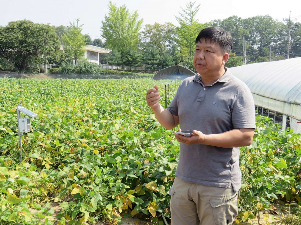 PHOTO: Farmer Kim Yong Sung demonstrates how he can perform remote-controlled irrigation with a smartphone at the villages first smart farm in Paju, South Korea, Sept. 30, 2019.