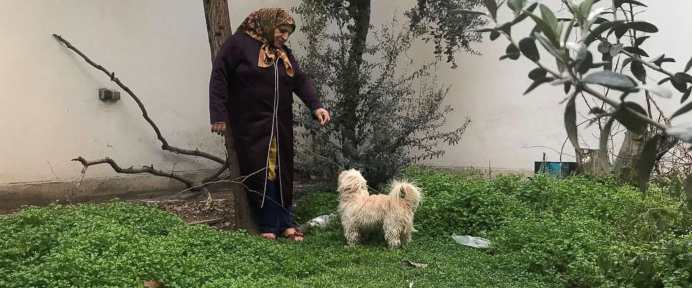 PHOTO: A woman stands with a dog in the back yard of an apartment building in Tehrah, Iran, Jan. 31, 2019.
