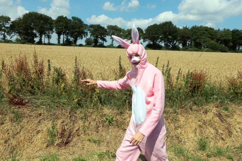 PHOTO: A spectator in a bunny costume waits for the pack of riders to pass during the sixth stage of the Tour de France cycling race over 112.5 mile   s with start in Brest and finish in Mur-de-Bretagne Guerledan, France, July 12, 2018.