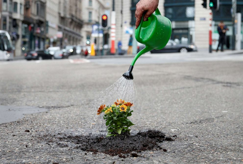 PHOTO: Brussels resident Anton Schuurmans waters flowers after planting them in an unrepaired pothole in Brussels, Belgium, April 5, 2018.