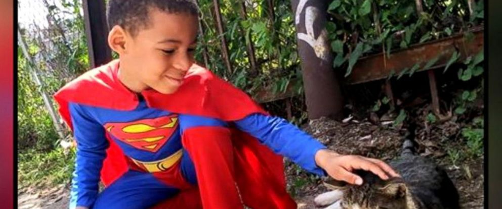 VIDEO: 5-year-old Catman saves Philadelphia strays