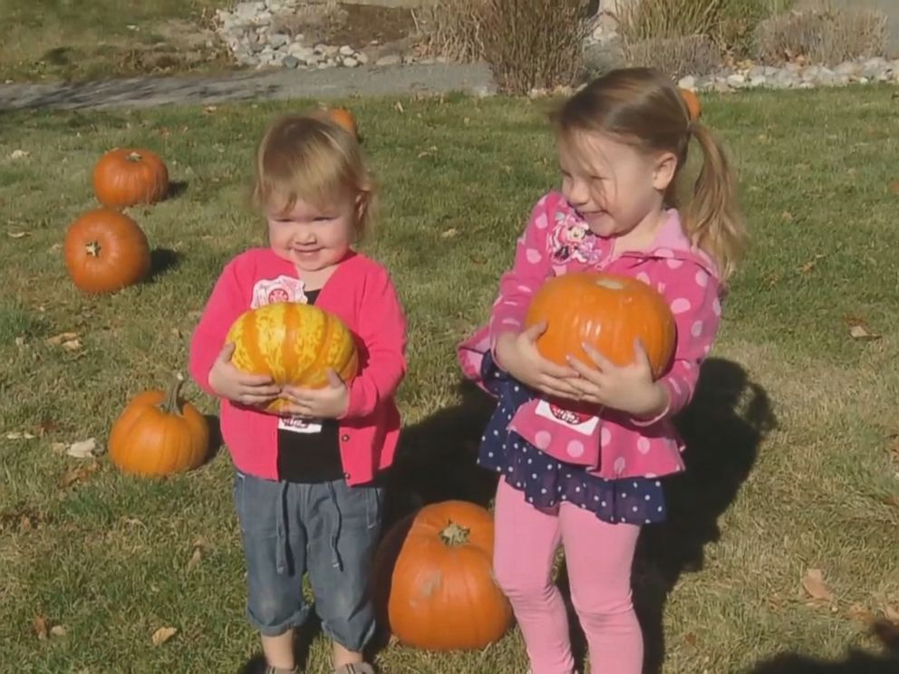 This is the 10th year the community of Aurora, Colorado, has set up pumpkins for children to pick on the hospitals front lawn.