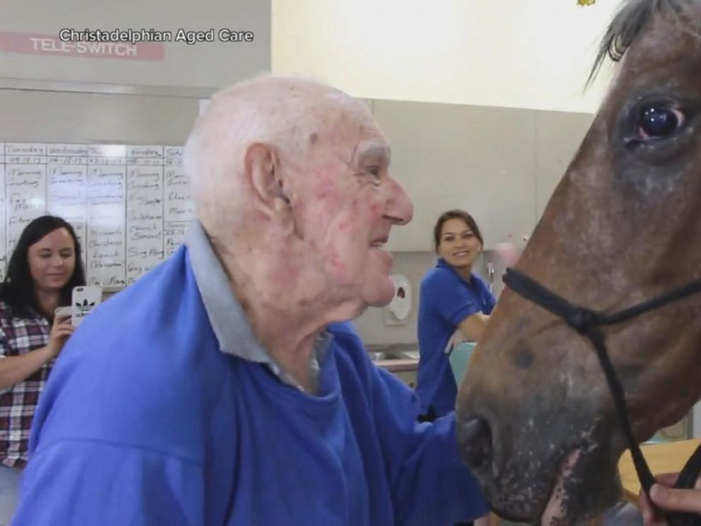 VIDEO: Horse visits retirement home in touching video