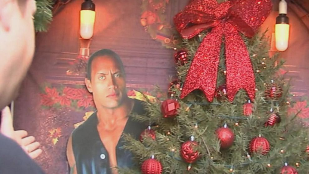 Family decks their halls in Christmas-themed puns - ABC News