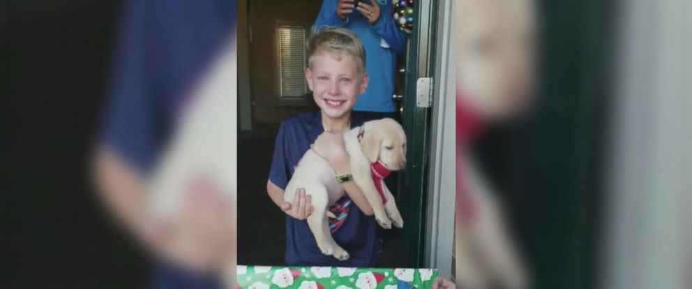 VIDEO: Boy being surprised with dog for Christmas is pure magic to see