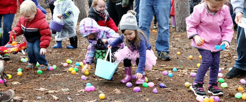 "PHOTO: Children pick up eggs and search for the egg with the ""Golden Egg"" in it at the Chippewa Valley Easter Egg Hunt in Carson Park in Eau Claire, Wis., March 26, 2016."
