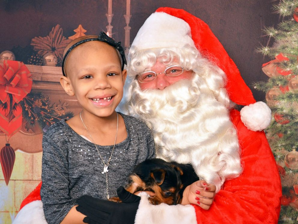 Wish For Christmas.7 Year Old Cancer Patient Granted Christmas Wish For Puppy