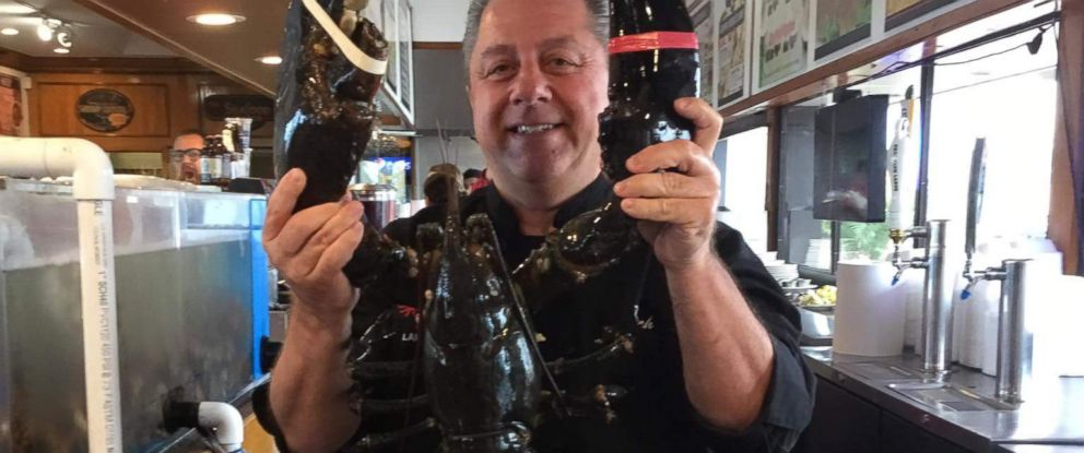 PHOTO: Peters Clam Bar owner Butch Yamali poses one last time with Louie, the 22-pound lobster.
