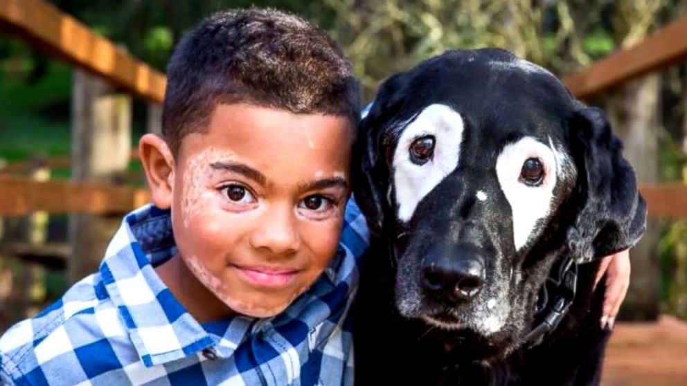 Boy, 8, with skin disorder takes trip to meet dog with same ...
