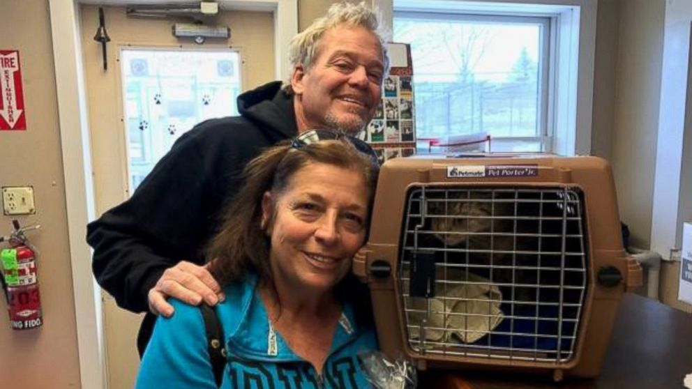 Jimmy the cat has made his way home after missing since September 13, 2014, in Wanaque, New Jersey.