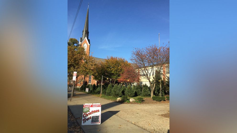 An anonymous do-gooder bought all the Christmas trees in Saint Mary  School's lot in - Unknown Do-Gooder Pays For All Christmas Trees In Lot, Sparks Free