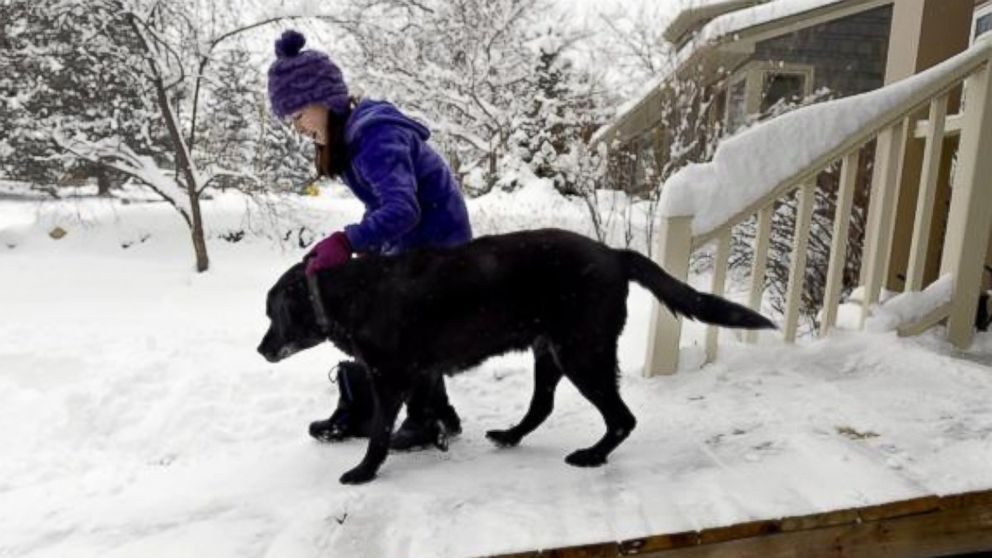 Maddie Dimetrosky, 11, helps her dog, Tashi, get down the new ramp built by their mailman on Thursday in Boulder.