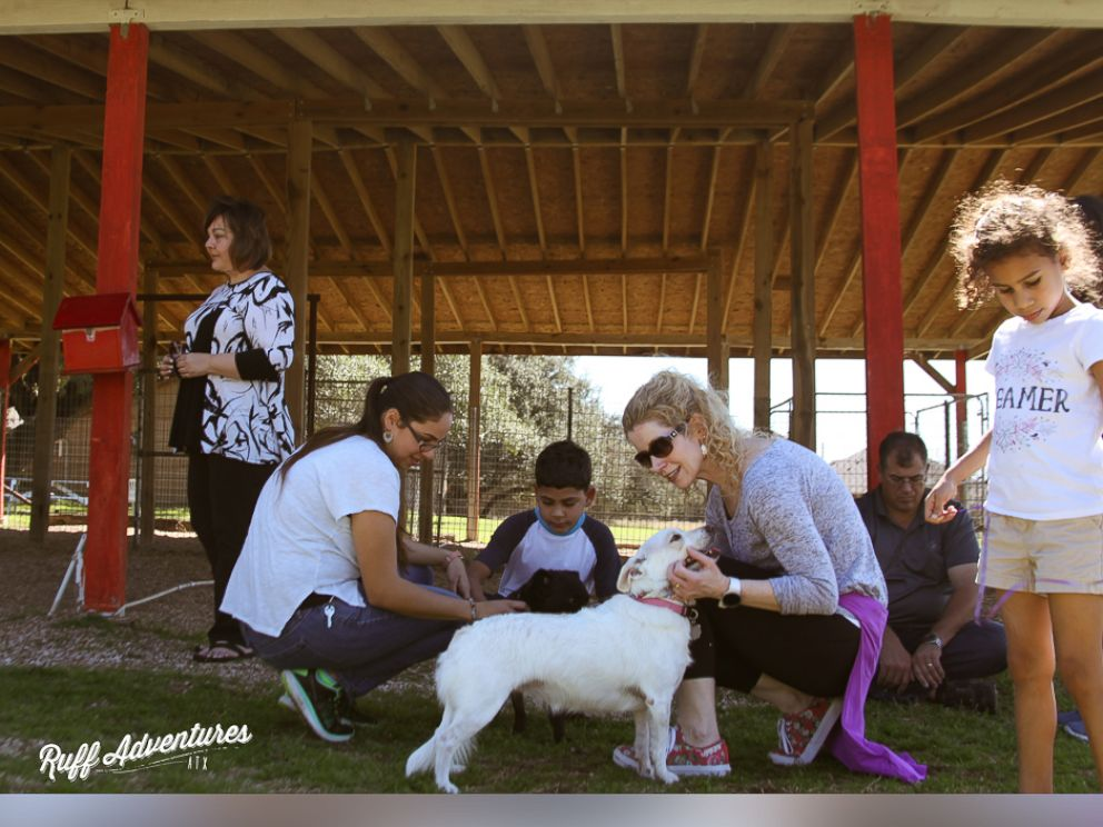 PHOTO: Frito the dog was reunited with his siblings after they were adopted from Texas Humane Heroes in Leander.