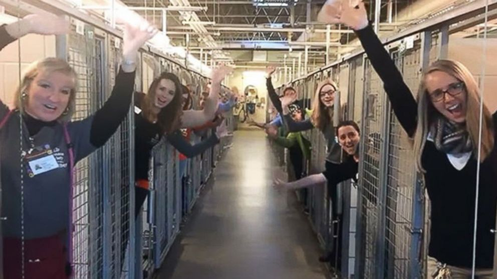 Humane Society of the Pikes Peak Region posted video to Facebook, of their staff and volunteers celebrating the success of their #HomefortheHolidays promotion, Dec. 19, 2016.