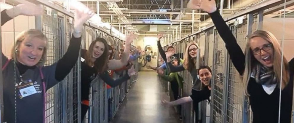 PHOTO: Humane Society of the Pikes Peak Region posted video to Facebook, of their employees and volunteers celebrating the success of their #HomefortheHolidays promotion, Dec. 19, 2016.