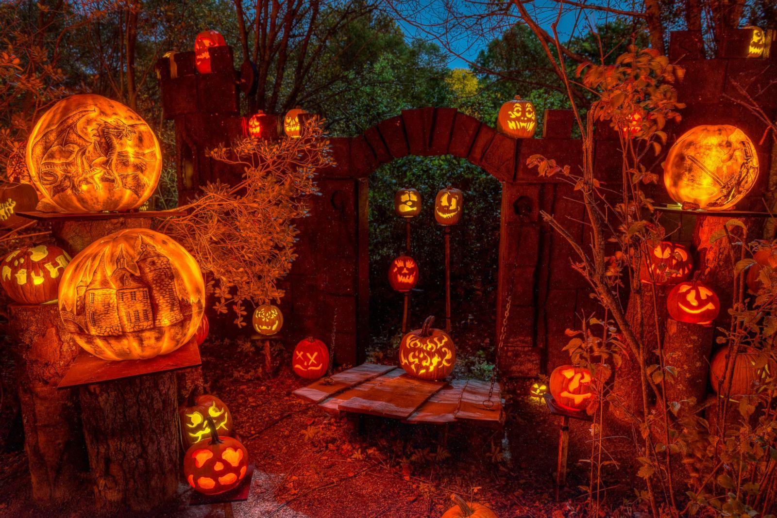 Halloween 2014: Amazing Pumpkin Carvings