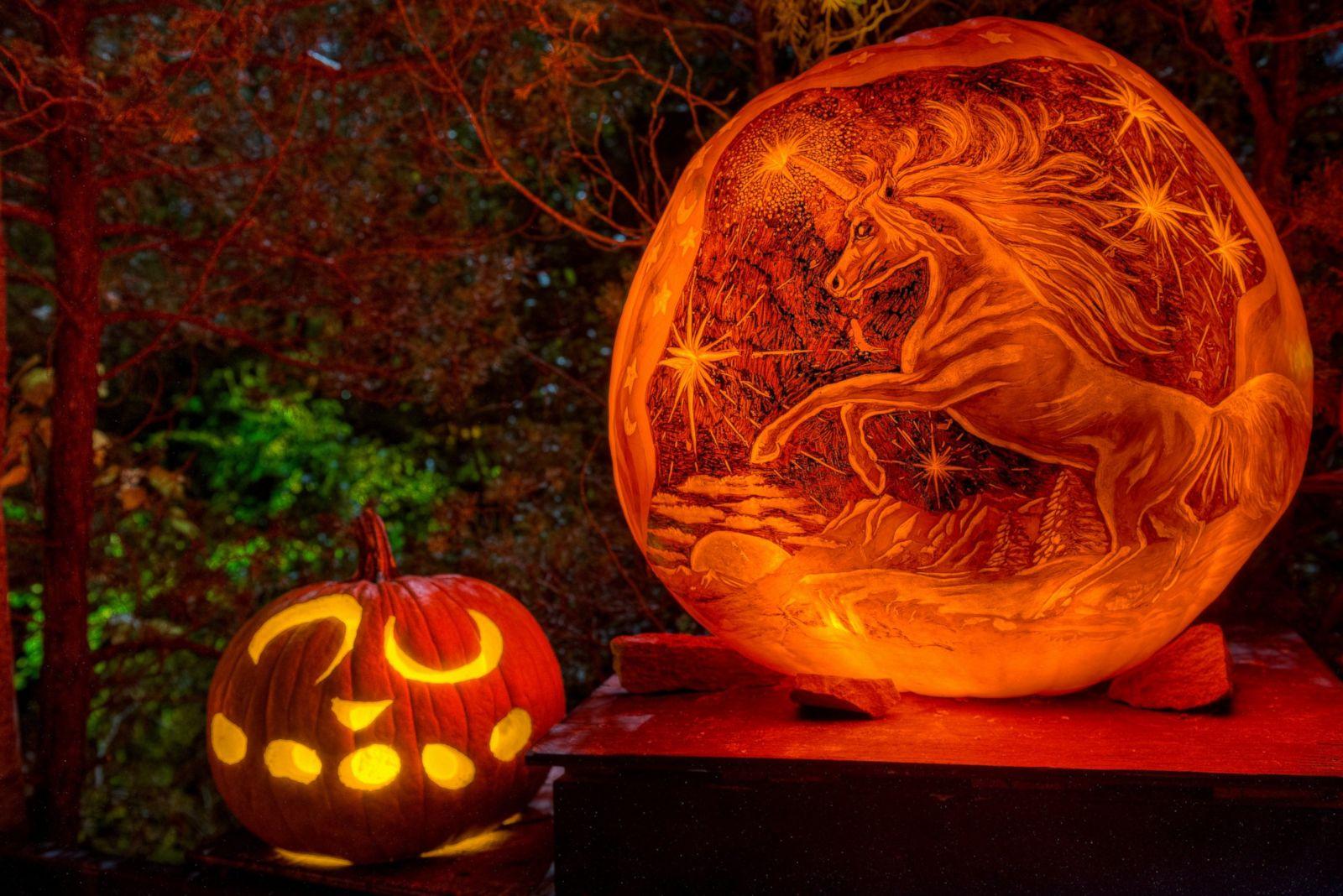 Halloween 2014 Amazing Pumpkin Carvings Photos Image 81 Abc News