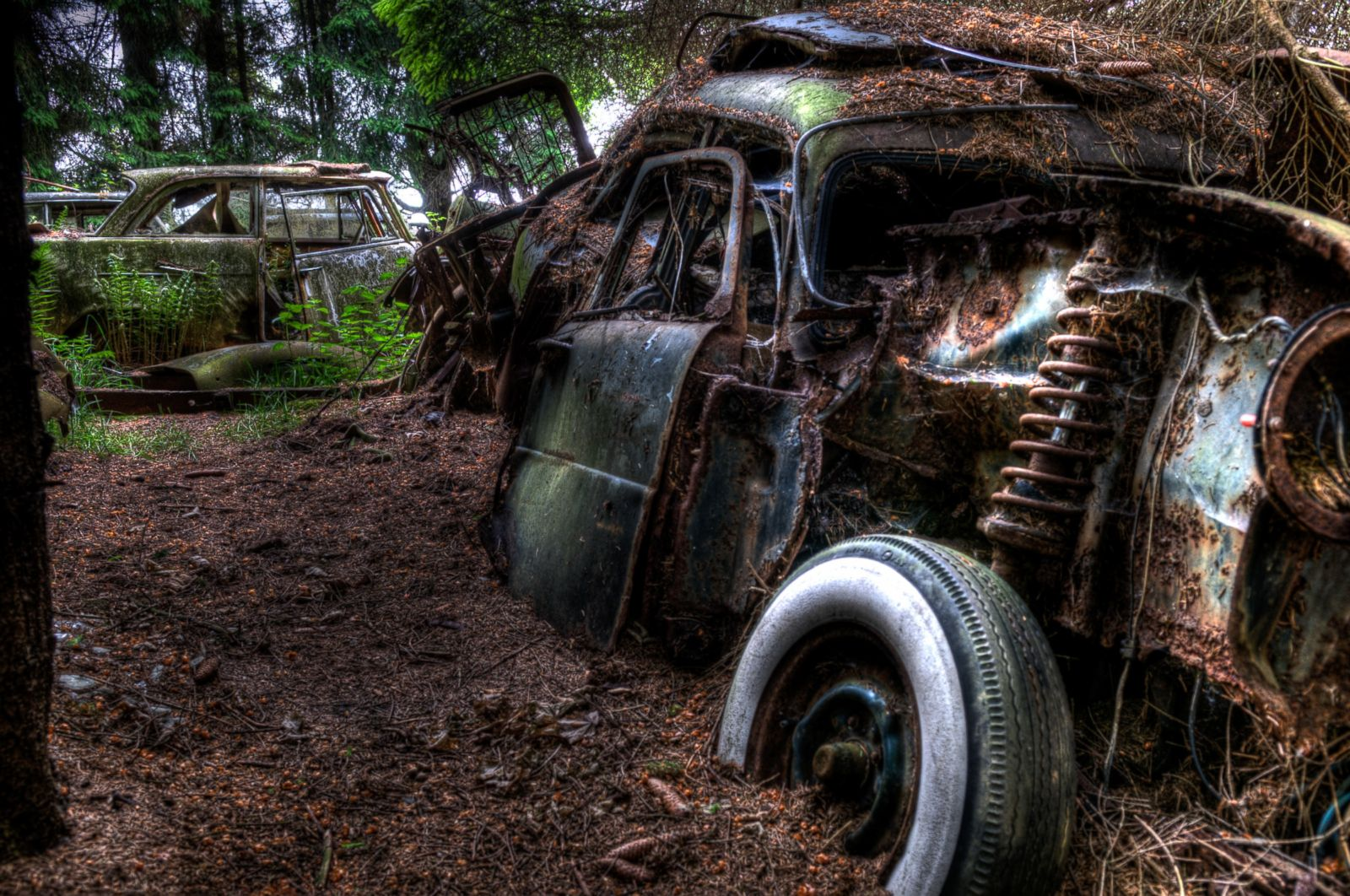 Forest Full of Abandoned Cars Photos | Image #14 - ABC News