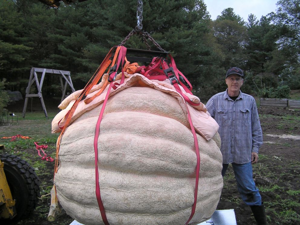 PHOTO: Steve Connolly, of Sharon, Mass., grew a pumpkin that weighed in at 2,075.5 pounds at the 2016 Topsfield Fair in Topsfield, Mass.