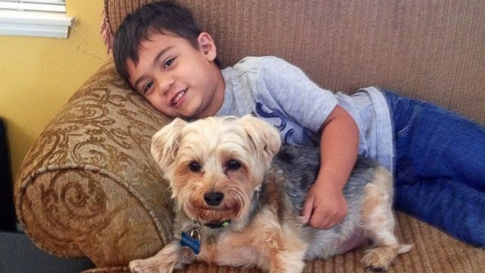 Jacob has autism and his mother Katie Tumalan said reading to the dogs has helped with his sensitivity to loud noises.