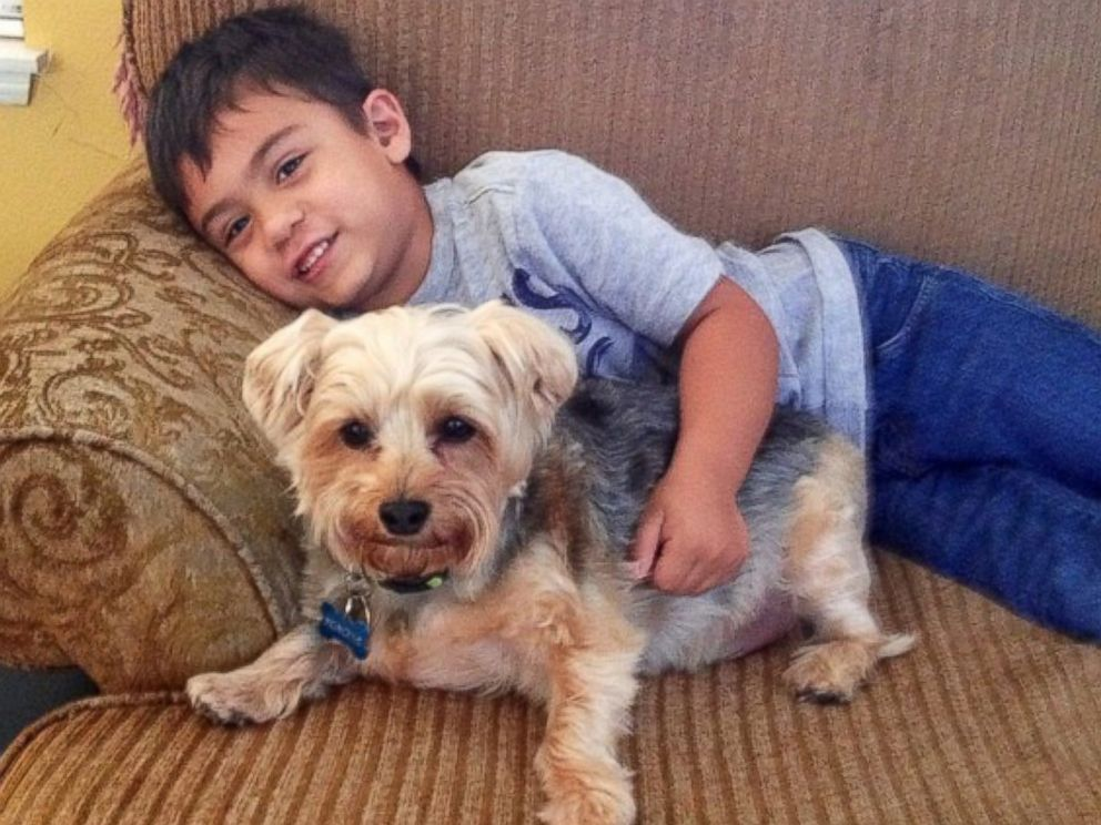 PHOTO: Jacob has autism and his mother Katie Tumalan said reading to the dogs has helped with his sensitivity to loud noises.