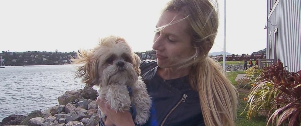 "PHOTO: ""GMA"" Investigates has uncovered dozens of cases of alleged pet grooming abuse and neglect throughout the country and across numerous companies."