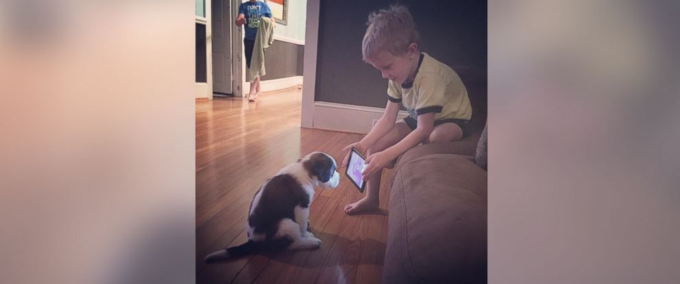 PHOTO: A photo of Lincoln Ball trying to train his new puppy by showing him a YouTube video has gone viral on Facebook.