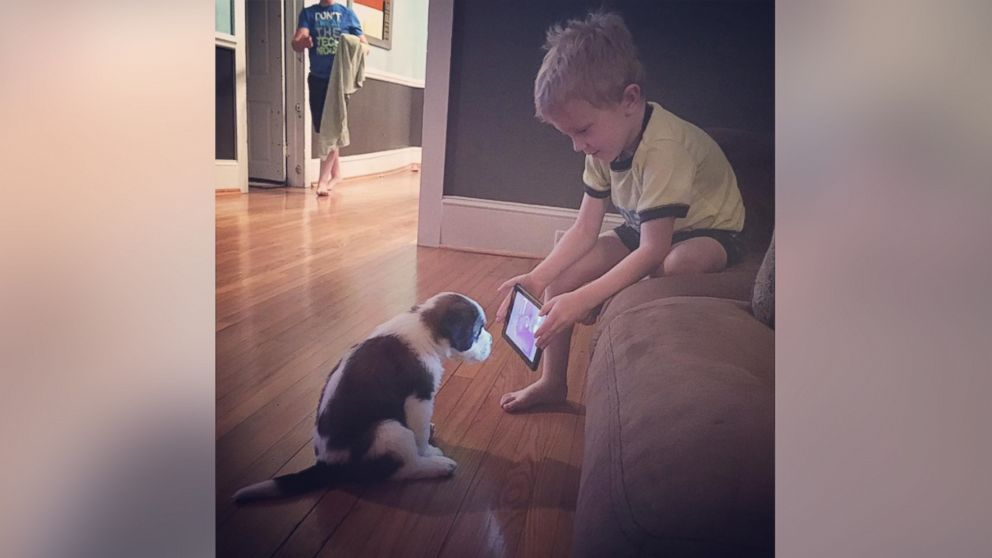 A photo of Lincoln Ball trying to train his new puppy by showing him a YouTube video has gone viral on Facebook.